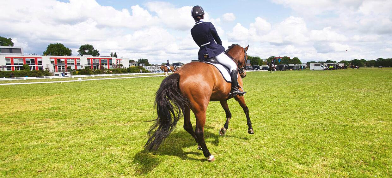 Flintridge Horse Show – West Palms Events